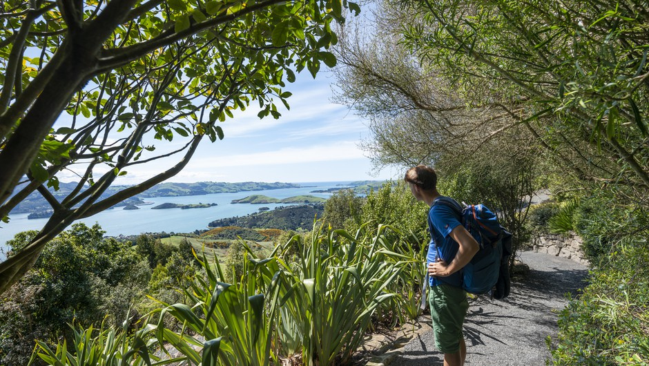 Nova Zelandija sto dni brez prenosa okužbe živi vsakdanje življenje (foto: profimedia)