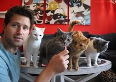 Ljubitelji mačk imajo zdaj čisto svojo aplikacijo za iskanje zmenkov