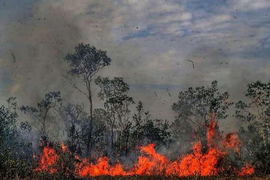 Brazilski predsednik Jair Bolsonaro požare v Amazoniji označil za laž