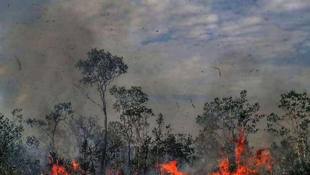 Brazilski predsednik Jair Bolsonaro požare v Amazoniji označil za laž (foto: Xinhua/STA)