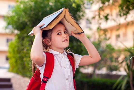 Po Kacinovih besedah bo vlada ukrepala tako, da se šolsko leto začne pravočasno in v celoti
