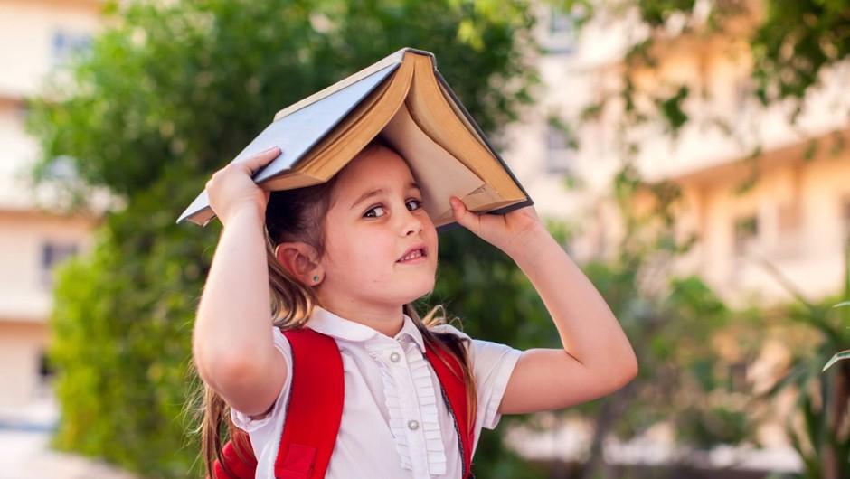 Po Kacinovih besedah bo vlada ukrepala tako, da se šolsko leto začne pravočasno in v celoti (foto: profimedia)