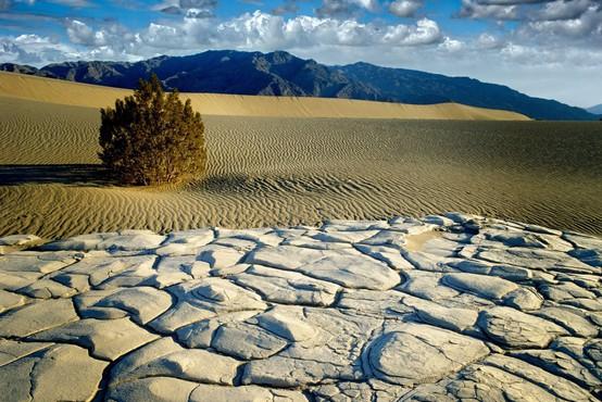 V Kaliforniji izmerili najvišjo temperaturo na svetu