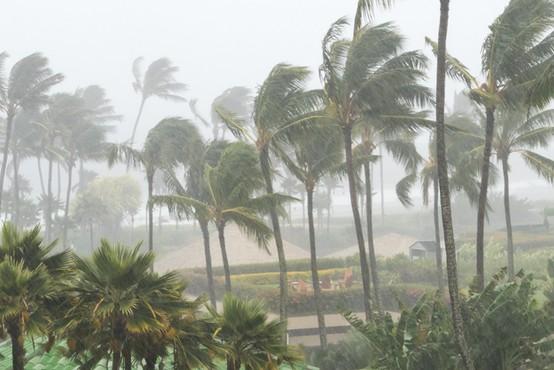 Tropski nevihti Marco in Laura razdejali Karibe, kot orkana se približujeta ZDA