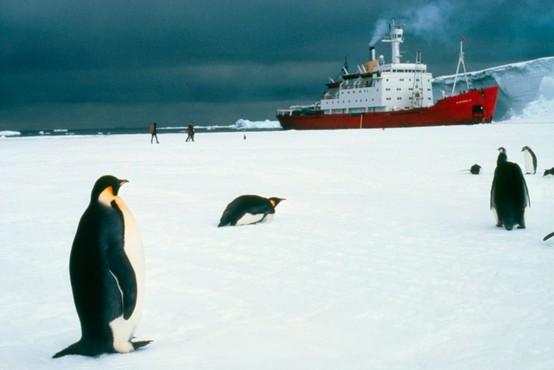 Po karanteni smo tako socialno anksiozni, kot bi prišli z odprave na Antarktiki