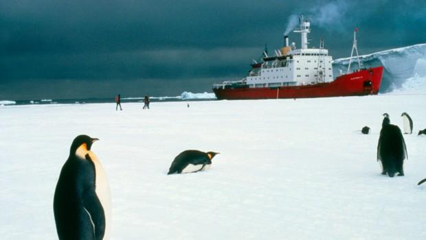 Po karanteni smo tako socialno anksiozni, kot bi prišli z odprave na Antarktiki (foto: profimedia)