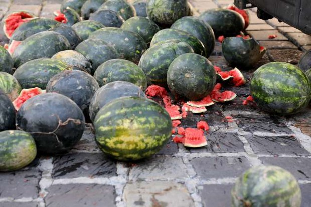 Hrvaški premier zaradi performansa z lubenicami zahteva okrepitev varnosti Banskih dvorov (foto: Hina/STA)