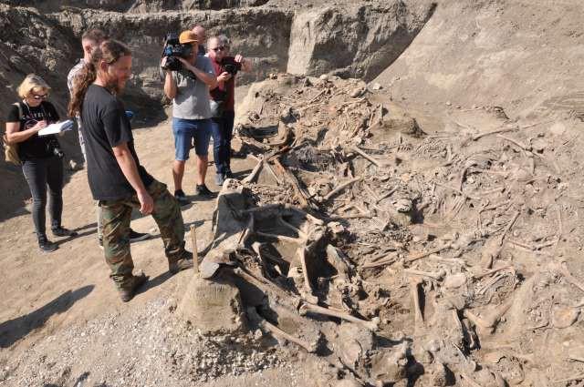 Pri Brežicah našli množično grobišče pobitih po drugi svetovni vojni (foto: Rasto Božič/STA)