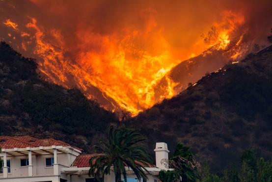 Požari na zahodu ZDA se širijo, v Oregonu ukazali evakuacijo pol milijona ljudi
