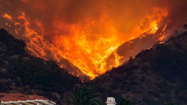 Požari na zahodu ZDA se širijo, v Oregonu ukazali evakuacijo pol milijona ljudi (foto: Shutterstock)