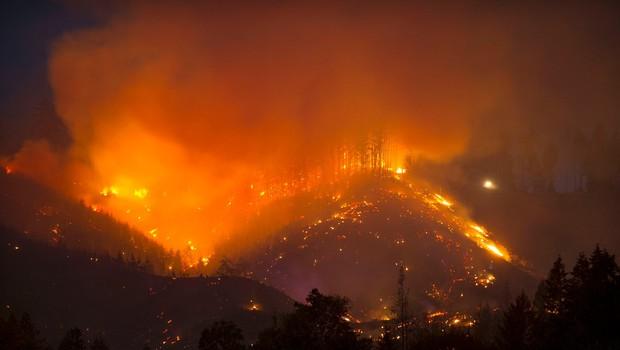 Ognjeni pekel, kakršnega na severozahodu ZDA ne pomnijo (foto: profimedia)