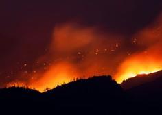 V plamenih na zahodu ZDA doslej ugasnilo najmanj 27 življenj