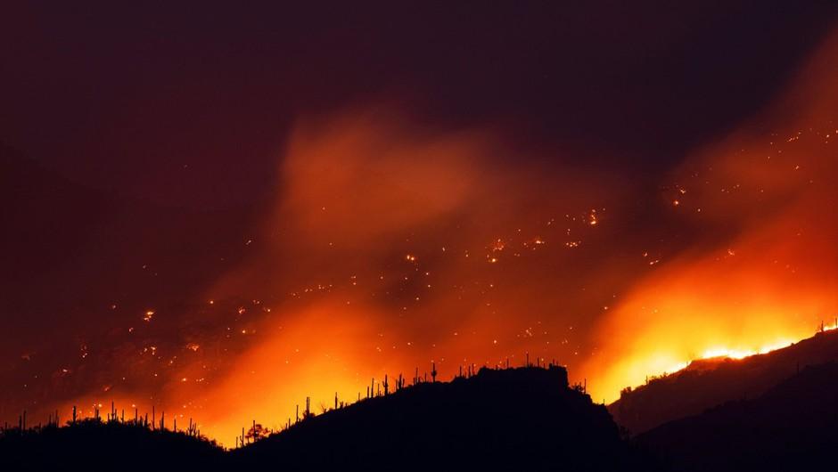 V plamenih na zahodu ZDA doslej ugasnilo najmanj 27 življenj (foto: profimedia)