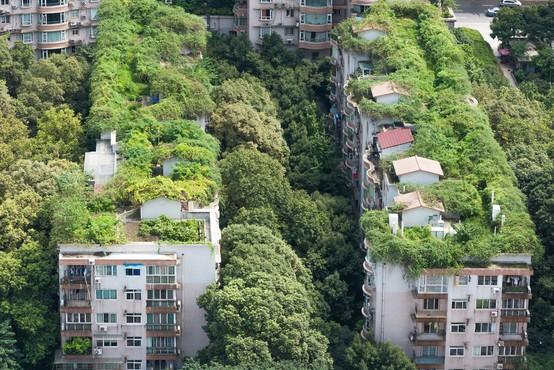 Žalostna usoda zelenega eksperimenta: zapuščena stanovanja, ker ljudje tam nočejo več živeti!
