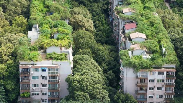 Žalostna usoda zelenega eksperimenta: zapuščena stanovanja, ker ljudje tam nočejo več živeti! (foto: profimedia)