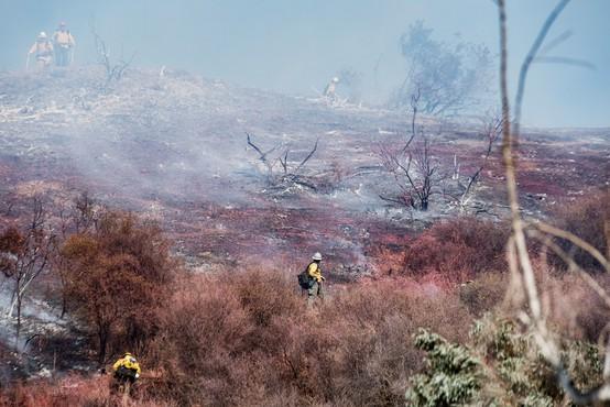 Dim od požarov v ZDA dosegel Evropo
