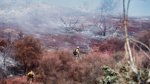 Dim od požarov v ZDA dosegel Evropo (foto: Profimedia)