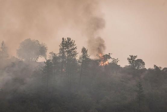 Požar v Ajdovščini, ki ga je hitro razpihovala burja, pod nadzorom