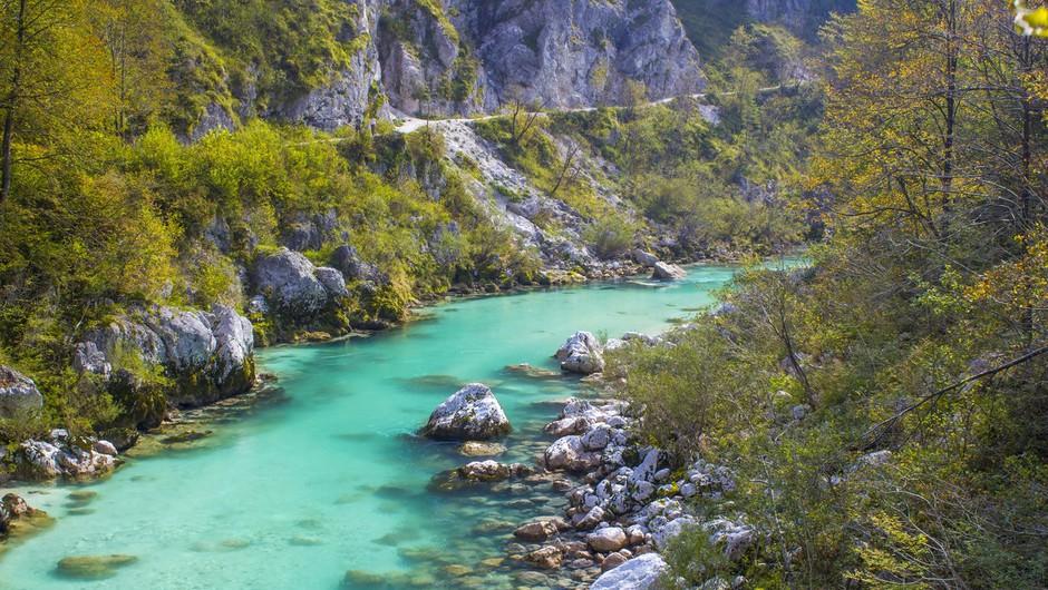 Okoljevarstvena akcija ob Soči za ohranitev narave in zdravja (foto: profimedia)