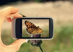 V drugem četrtletju za skoraj petino manj sporočil SMS in več MMS