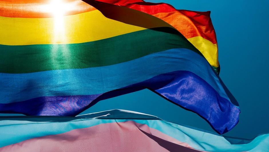 Skupnost LGBTIQ+ ob bok svojim pravicam postavila pravice širše civilne družbe (foto: profimedia)