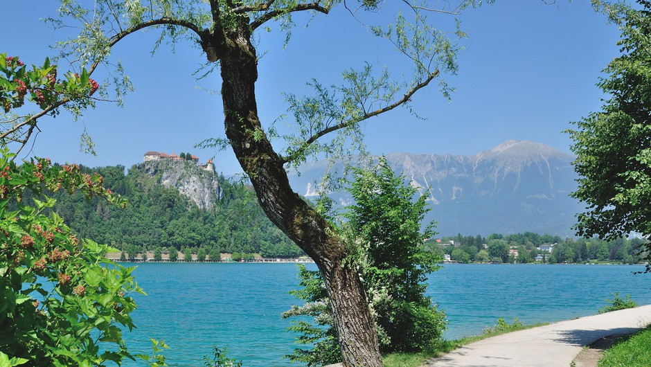 Unovčenih za 113 milijonov evrov turističnih bonov (foto: Profimedia)