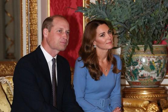 Princ William ustanovil okoljsko nagrado za inovativne rešitve