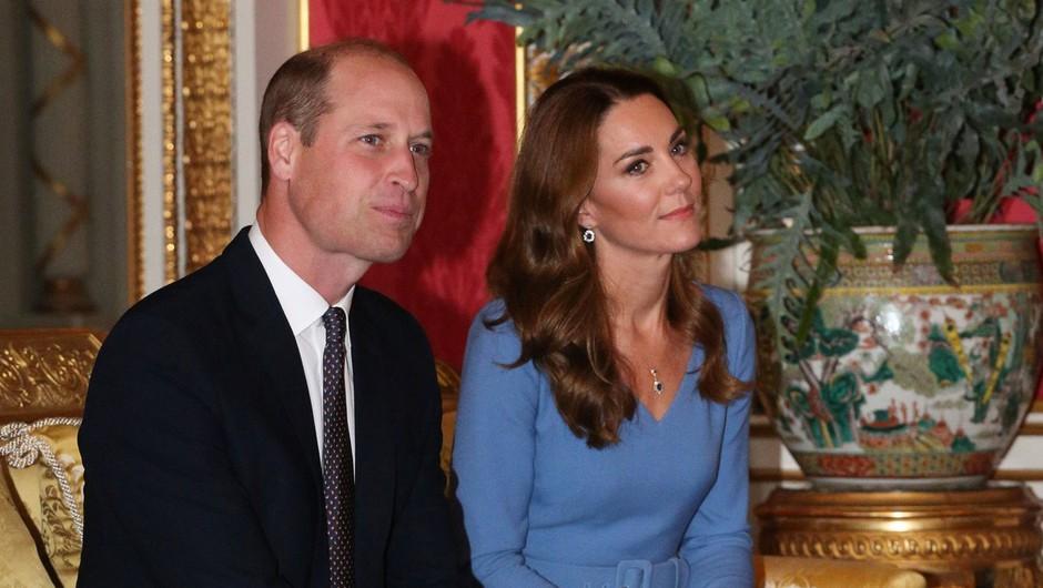 Princ William ustanovil okoljsko nagrado za inovativne rešitve (foto: Profimedia)