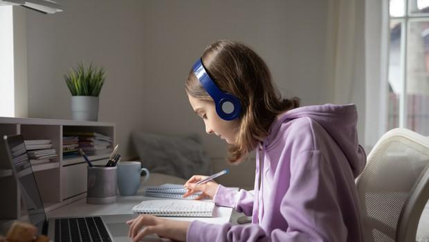 Pouk za starejše šolarje in dijake od danes poteka na daljavo (foto: Shutterstock)