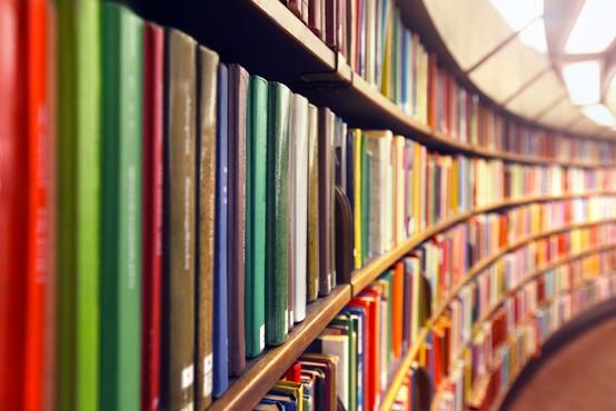 Med izjemami za opravljanje storitev od sobote tudi knjižnice
