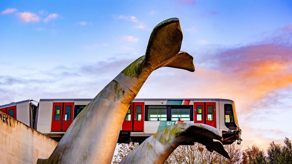 """Skulptura kita na Nizozemskem """"rešila"""" vlak podzemne železnice (foto: Profimedia)"""