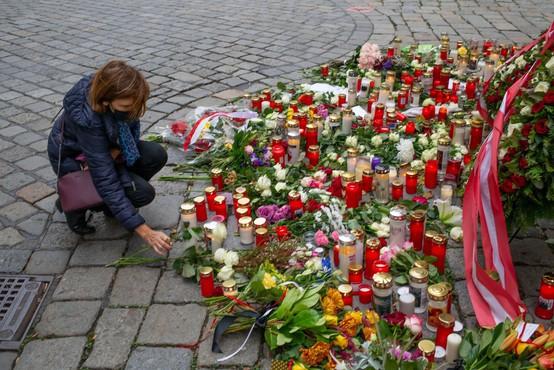 Preiskovalci dunajskega napada domnevajo, da je bil napadalec del širše mreže skrajnežev