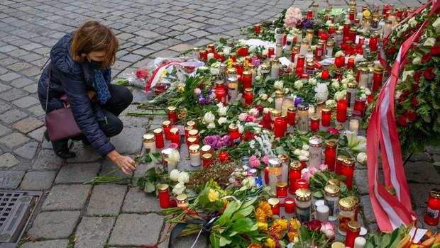 Preiskovalci dunajskega napada domnevajo, da je bil napadalec del širše mreže skrajnežev (foto: profimedia)