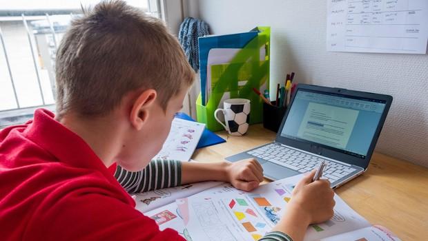 Po počitnicah spet pouk na daljavo, šole dobro pripravljene (foto: profimedia)