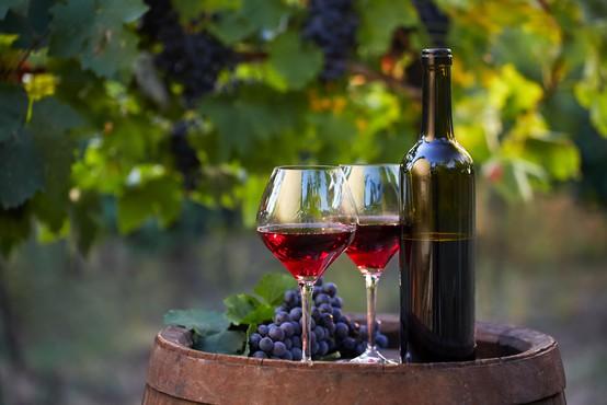 Vinogradniki in vinarji danes obeležujejo martinovo, a letos brez množičnih prireditev