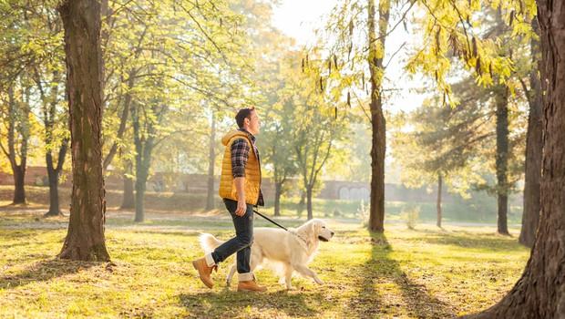 Nasveti strokovnjaka, kako naj tudi med epidemijo in delu od doma poskrbimo za telesno aktivnost (foto: Shutterstock)