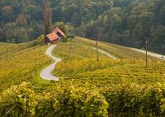 Turizem v Sloveniji oktobra zaradi drugega vala epidemije spet zastal
