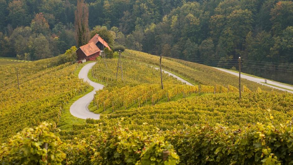 Turizem v Sloveniji oktobra zaradi drugega vala epidemije spet zastal (foto: Profimedia)