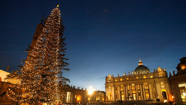 Slovenija bo letos praznično okrasila Vatikan, 75 let staro božično drevo iz Kočevja že na poti (foto: Profimedia)