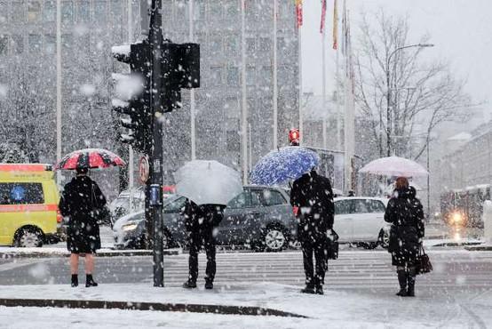 Meteorološka zima bo prinesla sneg