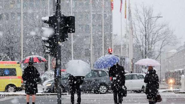 Meteorološka zima bo prinesla sneg (foto: STA)