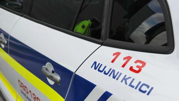 Policija preiskuje najdbo človeške lobanje v peči v novomeškem Bršljinu (foto: Daniel Novakovič/STA)