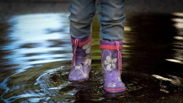 Na zahodu države narasle vode povzročajo težave (foto: STA)