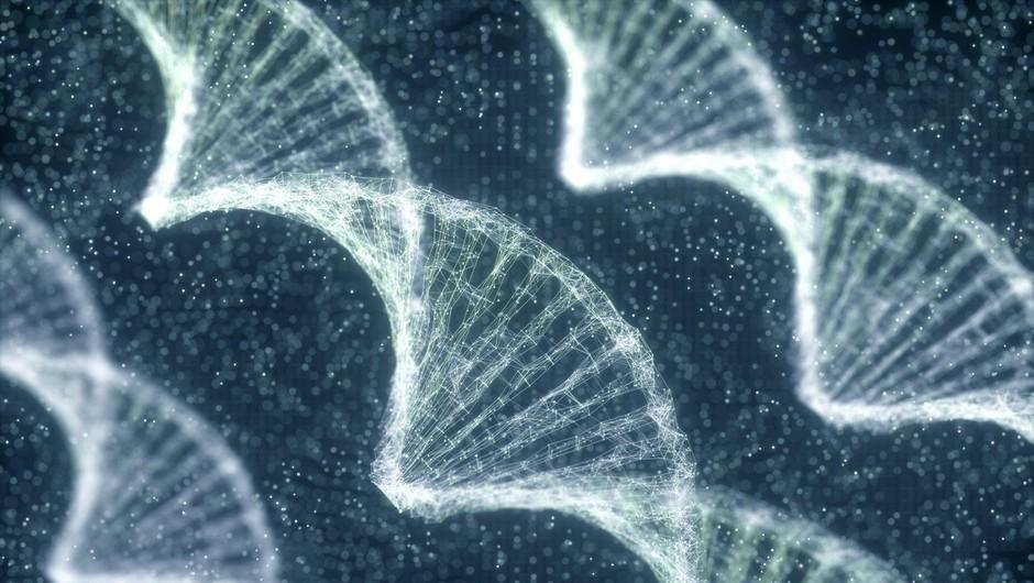 Za  najtežjo obliko covida-19 je odgovornih pet genov. kar odpira pot do učinkovitih zdravil (foto: profimedia)