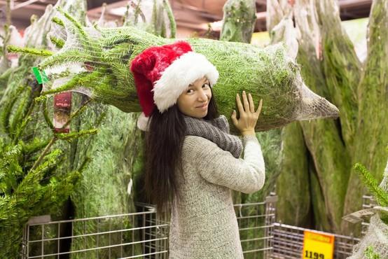 Zavistna prodajalka božičnih jelk organizirala pretep konkurenta (zgodilo se je v Zagrebu)