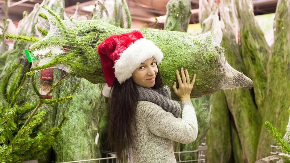 Zavistna prodajalka božičnih jelk organizirala pretep konkurenta (zgodilo se je v Zagrebu) (foto: profimedia)