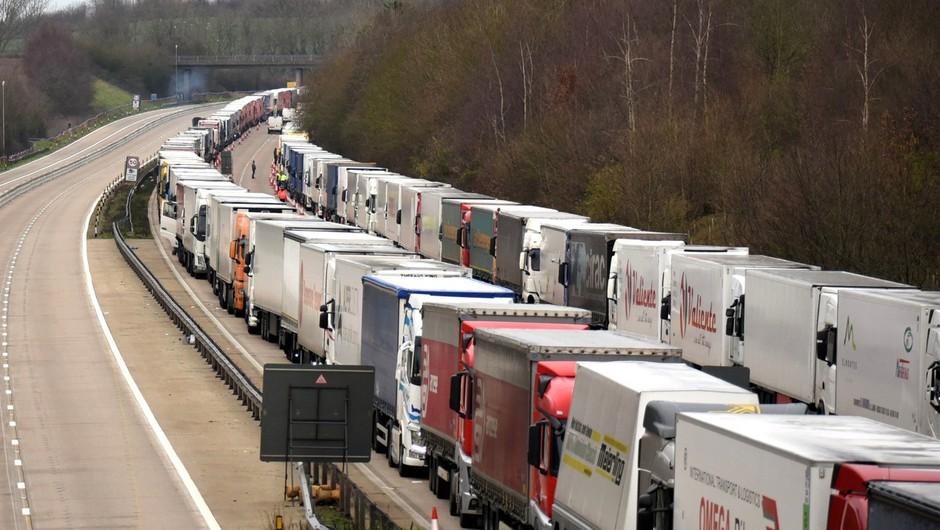 Britanci med tovornjakarji, ki čakajo na prehod v Francijo, potrdili 36 okuženih (foto: profimedia)