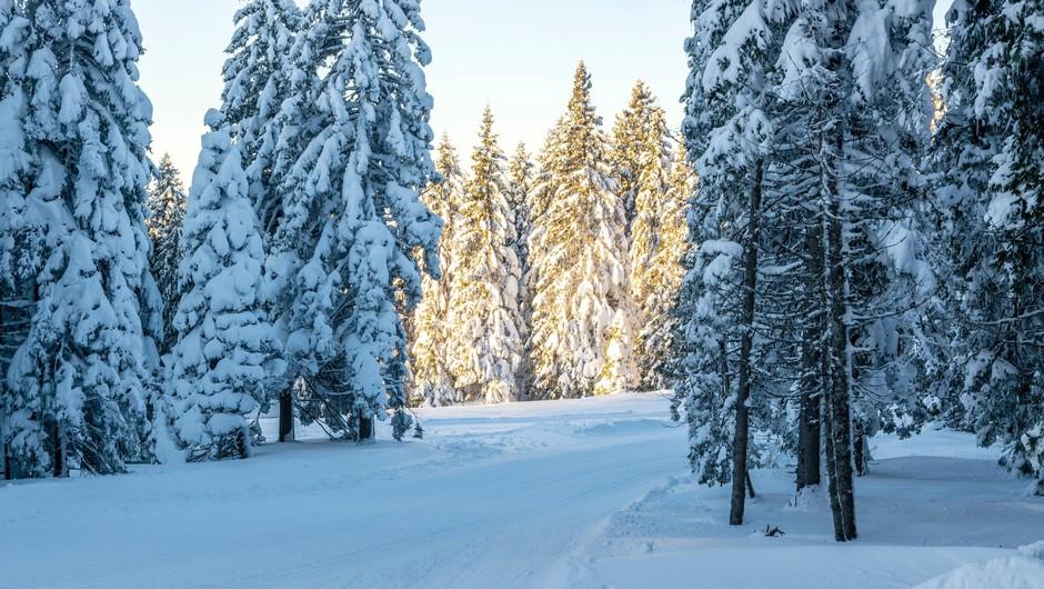 Ob večji verjetnosti snežnih plazov zelo previdno pri obisku gora (foto: Profimedia)