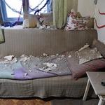 Na Hrvaškem v potresih poškodovanih več kot sto objektov, največ na območju Siska in Petrinje (foto) (foto: Posledice potresa)