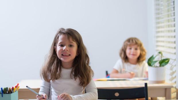 Avstrijski šolski minister napovedal tedensko testiranje učencev po odprtju šol (foto: profimedia)